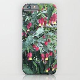 Red firecracker flower in Butchart's Garden iPhone Case