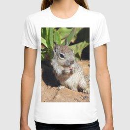 Itty Bitty T-shirt