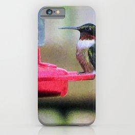 Happy Hummer Ruby Throated Hummingbird iPhone Case