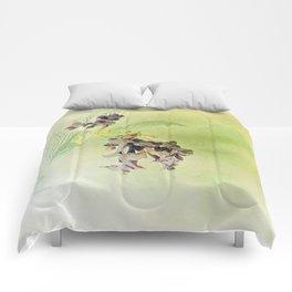 Blossom Inversion Comforters