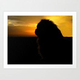 Lion dog sunset Art Print