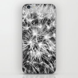 Fractals - Fine Art Black and White Abstact Nature Photograph, Cacti iPhone Skin