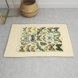 Vintage Butterfly Diagram // Papillions by Adolphe Millot 19th Century Science Textbook Artwork Rug