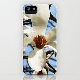 Spring Dogwood iPhone Case