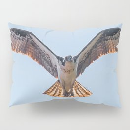 Nine Mile Osprey III Pillow Sham