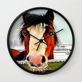 Snowy Whiskers Wall Clock