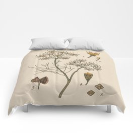 Dill Comforters