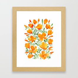 Watercolor California poppies Framed Art Print