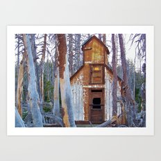 Abandoned Cabin Art Print