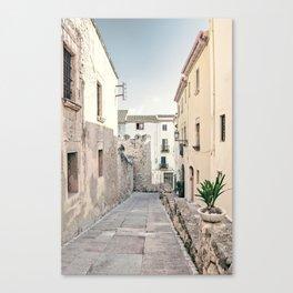 Empty Street Canvas Print
