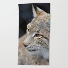 Young lynx close-up portrait Beach Towel