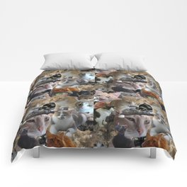 Cats of the neighborhood pattern Comforters