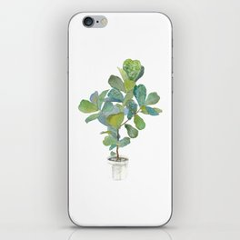 Fiddle Leaf Fig Tree iPhone Skin