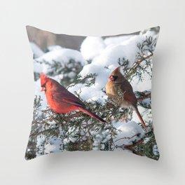 Sunny Winter Cardinals (square) Throw Pillow