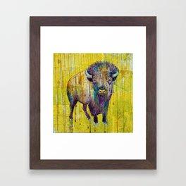 Colorado Buffalo Framed Art Print