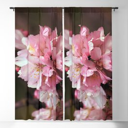 Almond Bloom Blackout Curtain