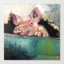 Peeping Piggy Canvas Print