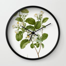 Snowdrop bush Styrax officinale from Traite des Arbres et Arbustes que lon cultive en France en plei Wall Clock