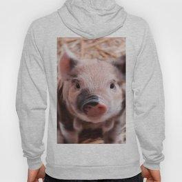 Sweet piglet Hoody