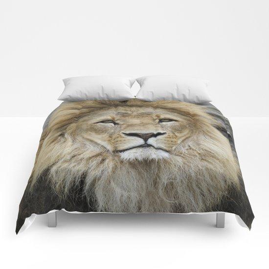 Lion_2014_1002 Comforters