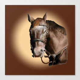Season of the Horse - Pudding Canvas Print