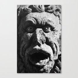 Stone Faced Canvas Print