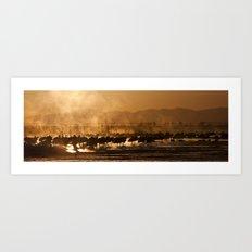 Sandhill Cranes Waking in the Morning Mist Art Print
