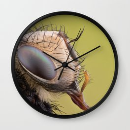 Insect VI Wall Clock