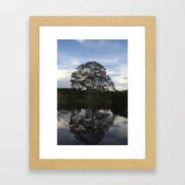 Reflected Tree on the Waters Framed Art Print