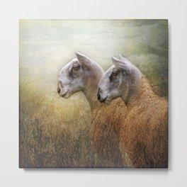 Golden Fleece Metal Print