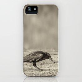 Curious Crow iPhone Case