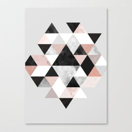 Graphic 202 Canvas Print