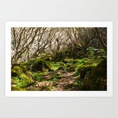The Shire Art Print