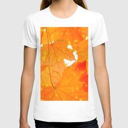 Fall Orange Maple Leaves On A White Background #decor #buyart #society6 T-shirt