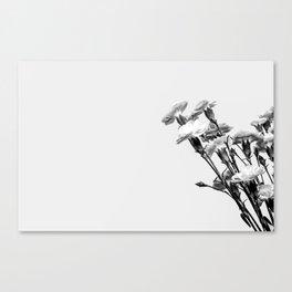 138 Canvas Print