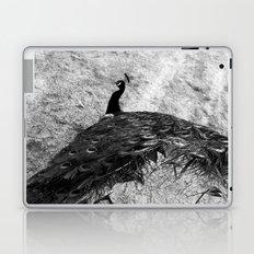 Show Off BW Laptop & iPad Skin