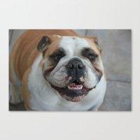 english bulldog Canvas Prints featuring English bulldog by lyndseylou
