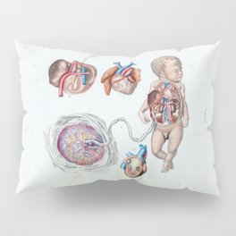 Vintage Anatomy of a Human Infant in Womb Pillow Sham