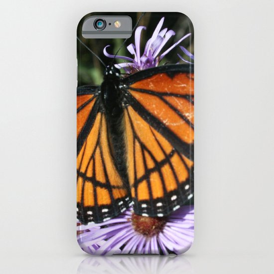 Viceroy iPhone & iPod Case