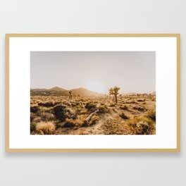 Joshua Tree VI Framed Art Print