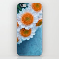 summer in orange iPhone & iPod Skin
