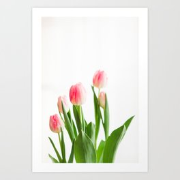 Dose of Spring by Tulips Art Print