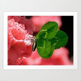 Lucky Butterfly Art Print