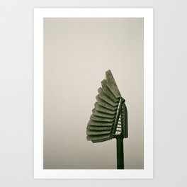 Faned out Art Print