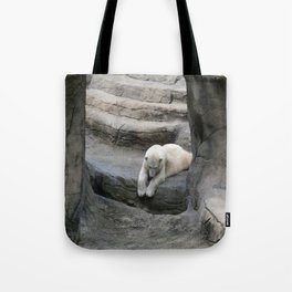 I Wonder if anyone is down There? Tote Bag