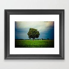 Tree in a Field Framed Art Print