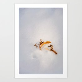 Beautiful golden leaves in the snow Art Print