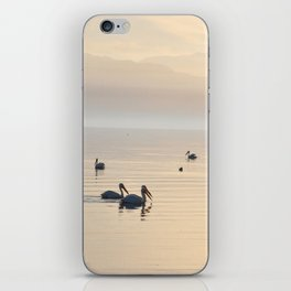 MYSTERIOUS SALTON SEA iPhone Skin