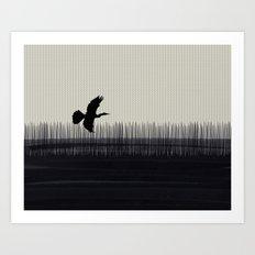 Anhinga Florida Everglades Art Print