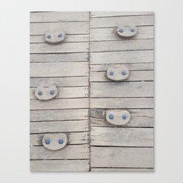 Wood Panels Canvas Print
